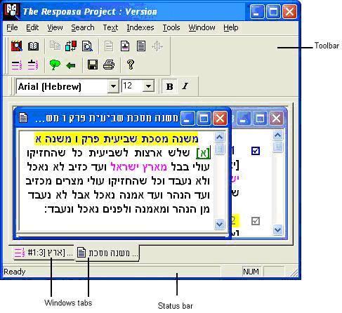 Bar Ilan Software on Flash Drive